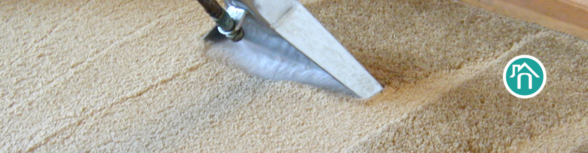 Professional Carpet & Upholstery Cleaning
